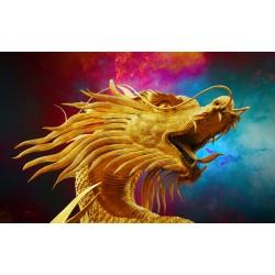 40х50 см Златен Дракон