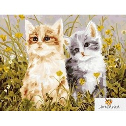 Две котенца