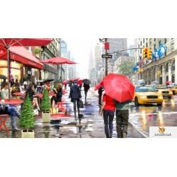 Дъжд в Ню Йорк -  Ричард МакНийл